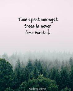 nature adventure travel explore quotes New Adventure Quotes, Nature Adventure, Adventure Travel, Hiking Quotes, Travel Quotes, Real Life Quotes, Daily Quotes, Meaningful Quotes, Inspirational Quotes