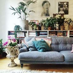 love the colors, style, plants, low shelf with art above. I think I have about this many books. -jr