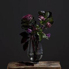French Gray Enfärgad Vas Still Life - Hemtex + Plaza French Grey, Still Life Photography, Glass Vase, Landscape, Plants, Boat, Home Decor, Still Life, Dinghy