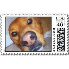 Dog Postage Stamps $22.45