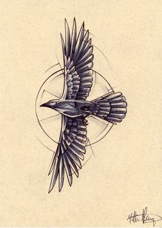 Tattoo design commission of a very streamlined little crow with a compass suggestion behind it.