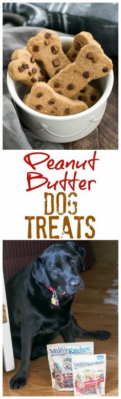 Easy Homemade Peanut Butter Dog Treats your pet will adore! Made with Milo's Kitchen home-style dog treats from Meijer! #miloskitchen #pmedia #ad