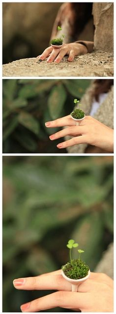 Fairy Garden Ring - very cute.. wouldn't last long in everyday life though haha