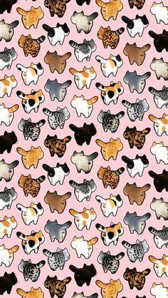 39 Cute Cat Wallpaper for Cat People wallpaper,cat wallpaper,cat,pet Wallpaper Gatos, Cat Phone Wallpaper, Cat Pattern Wallpaper, Cute Cat Wallpaper, Cute Wallpaper Backgrounds, Cute Cartoon Wallpapers, Pastel Wallpaper, Cat Background, Jolie Photo