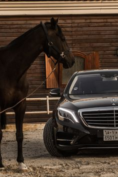 Mercedes Horsepower