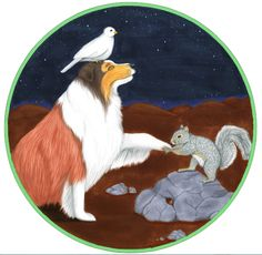 """The hero Tristan, a sheltie, gets a bur in his paw and sidekick squirrel must come to the rescue in """"A Sheltie's Tale"""" Sheltie, My Drawings, Squirrel, Childrens Books, Things That Bounce, Whimsical, Bunny, Greeting Cards, Kids Rugs"""