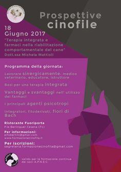 """""""Prospettive cinofile"""" a Cesena: la terapia integrata al centro dell'approfondimento :http://www.qualazampa.news/event/prospettive-cinofile-a-cesena-la-terapia-integrata-al-centro-dellapprofondimento/"""