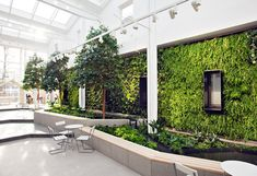 PlantWalls – Greenery Without Losing Floor Space Materiallized by Green Fortune Indoor Outdoor, Indoor Plants, Green Facade, Plant Wall, Easy Garden, Floor Space, Sustainable Living, Architecture Details, Gardening Tips