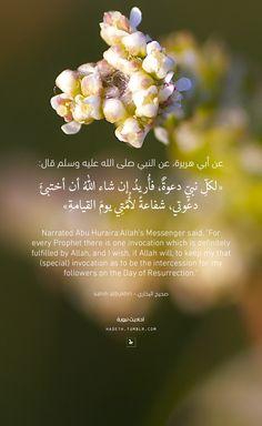 "hadeth: "" عن أبي هريرة، عن النبي صلى الله عليه وسلم قال: ""لكلِّ نبيٍّ دعوةٌ ، فأُريدُ إن شاء اللهُ أن أختبئَ دعوتي ، شفاعةً لأُمَّتِي يومَ القيامةِ"" صحيح البخاري Narrated Abu Huraira: Allah's..."