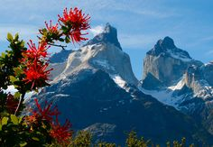Torres Del Paigne Mountains Chile Photograph