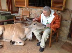 John Corigliano having a beer with an eland.