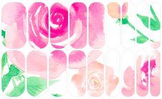 Watercolored Roses   NAS