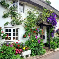 Beautiful Branscombe cottages, Devon, England.