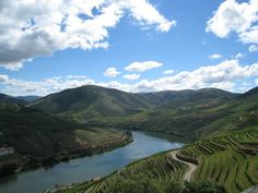 Pinhao vineyards, Douro River Valley