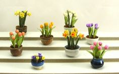 Spring is in the air and in miniature.