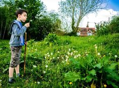 Finlay - The Naturalist