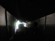 A Texas childhood: Brackenridge Park zoo train tunnel   San Antonio Charter Moms
