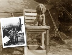 "Rusty, the cocker spaniel belonged to an American pilot named Lt. Augustus ""Gus"" Hamilton of the 366th Fighter Squadron, 358th Fighter Group, 9th Air Force. He was killed in action near Bérou-la-Mulotière on July 14th, 1944 during a mission he volunteered for after he had completed his required missions."