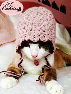 pet cat small dog hat crochet accessories yarn by Esthetehandmade, ฿350.00