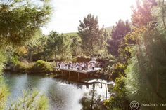 See these beautiful Old Mac Daddy Wedding Photos by ZaraZoo Photographers Cape Town. This unique wedding venue is perfect for couples who are different Cape Town Wedding Venues, Forest Wedding Venue, Rustic Wedding Venues, Inexpensive Wedding Venues, Best Wedding Venues, Dream Wedding, Wedding Locations, Wedding Things, Summer Wedding