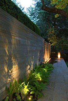 STEPHEN STIMSON ASSOCIATES | WOODLAND RESIDENCE lighting the plants, beautiful shadow on the wall.