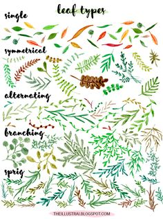 The Illustrai is all about providing inspiration for a more creative lifestyle. Here you can find illustrations, art tutorials, fun freebies, & more. Watercolor Leaves, Watercolor Sketch, Watercolor Rose, Leaf Drawing, Plant Drawing, Drawing Tips, Doodle Sketch, Doodle Art, Types Of Drawing Styles