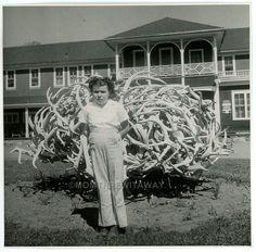 1940s Photo Chubby Little Girl Jan Mathews at Elkhorn Lodge Estes Park CO #1