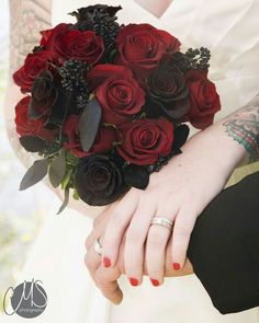 These are the darkest roses I've ever seen. Not sure if they are airbrushed or what, but this is some serious red and black rose bouquets. Black Rose Bouquet, Red Bouquet Wedding, Bride Bouquets, Floral Wedding, Wedding Flowers, Black Magic Roses, Black And Red Roses, Red Black, Purple Roses