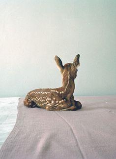 Deer !