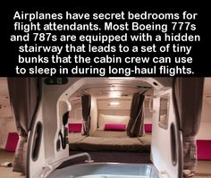 19 Interesting Facts You Probably Didn't Know