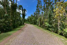 Rua Interna. 300.000 metros de muito verde em um condomínio familiar.