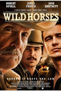 Wild Horses (2015) ... A detective opens up a fifteen-year-old missing persons case and begins to suspect that the boy it belongs to was murdered - and that a local rancher was involved. (05-Sep-2015)