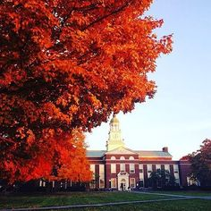 Bucknell -How do you make a great first impression?  #Job #VideoResume #VideoCV #jobs #jobseekers #careerservices #career #students #fraternity #sorority #travel #application #HumanResources #HRManager #vets #Veterans #CareerSummit #studyabroad #volunteerabroad #teachabroad #TEFL #LawSchool #GradSchool #abroad #ViewYouGlobal viewyouglobal.com ViewYou.com #markethunt MarketHunt.co.uk bit.ly/viewyoupaper #HigherEd #PersonalBrand #brand #branding vk.com/goviewyou photo by @bucknellu