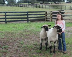 American Farm Bureau Foundation for Agriculture -  Addressing Animal Agriculture in Children's Books  Guest blogger, author Michelle Houts addresses the topic of animal agriculture in children's books – telling the truth to young readers.
