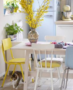 My kitchen - #forsythia #smeg #ikea #mooivandraad