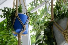 You can make a simple and trendy hanging macrame plant holder in ten minutes with just a few basic supplies and this DIY step-by-step tutorial.