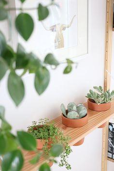 Maak een wandplank voor planten