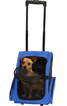 e9c2ef569910 Amazon.com   Safstar Oxford Pet Carrier Puppy Trolley Rolling Backpack  Airline Approved Travel Wheels Luggage Bag for Cats Dogs (Blue)   Pet  Supplies