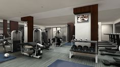 Contemporary Home Gym with CAP Barbell Hex Dumbbell Set, Yowza fitness captiva elliptical, tv wall mount, Valeo medicine ball