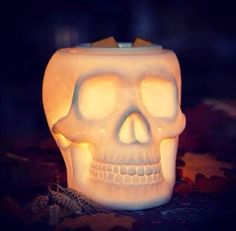 Simply stunning Bones
