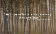 We've got to live, no matter how many skies have fallen. DH Lawrence, Lady Chatterley's Lover