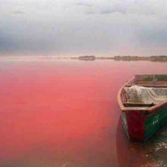 Lac Rose/Pink Lake, Senegal