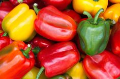 Learn how to plant, grow, and harvest bell peppers with this garden guide from The Old Farmer's Almanac. Recipes With Banana Peppers, Stuffed Banana Peppers, Stuffed Green Peppers, Pepper Recipes, Low Carb Vegetables, Growing Vegetables, Gardening Vegetables, Fresh Vegetables, How To Store Peppers
