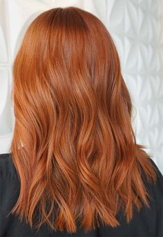 53 Fancy Ginger Hair Color Shades to Obsess over: Ginger Hair Facts - Copper Hair Curly Ginger Hair, Ginger Hair Color, Hair Color And Cut, Matrix Hair Color, Hair Facts, Hair Dye Tips, Silver Blonde Hair, Hair Color Auburn, Strawberry Blonde Hair