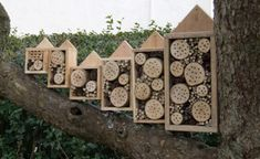 Solitary Bee Boxes