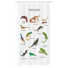 Reptile Stall Shower Curtain, Lizard Family Design on Plain Background Primitive Camouflage Exotic Creatures, Fabric Bathroom Set with Hooks, 36W X 72L Inches Long, Multicolor, by Ambesonne #primitivehomes