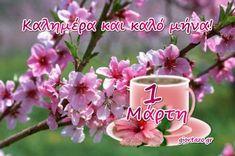 Mina, Birthday Greetings, Happy Day, Good Morning, Tableware, Buen Dia, Dinnerware, Bonjour, Tablewares