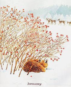Fox by Mary Beth Owens