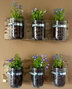 Creative Uses For Mason Jars and Other Savvy Hits of the Week!