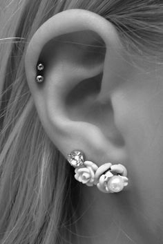 This is almost exact of how my one ear looks, two studs in the cartlege, two roses and a stud. But I have my tregus!